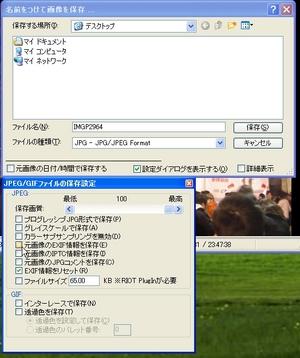 ExifViewerAndIrfanViewPlugin_04.jpg