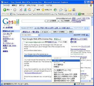 WebSearchAssistant_04.jpg