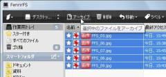 FFS_10-thum.jpg