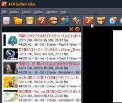 flv_04-thum.jpg