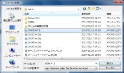 avc_02-thum.jpg