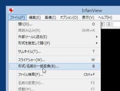 ifv_01-thum.jpg