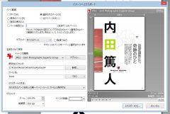 pdfv_03-thum.jpg
