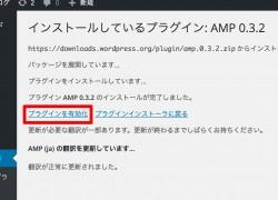 amp2_06