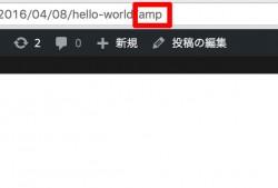 amp2_09