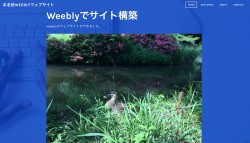 weebly_14