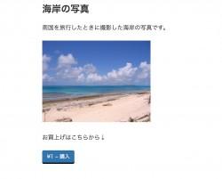 photo2_10