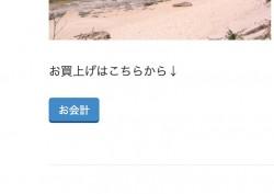 photo2_11